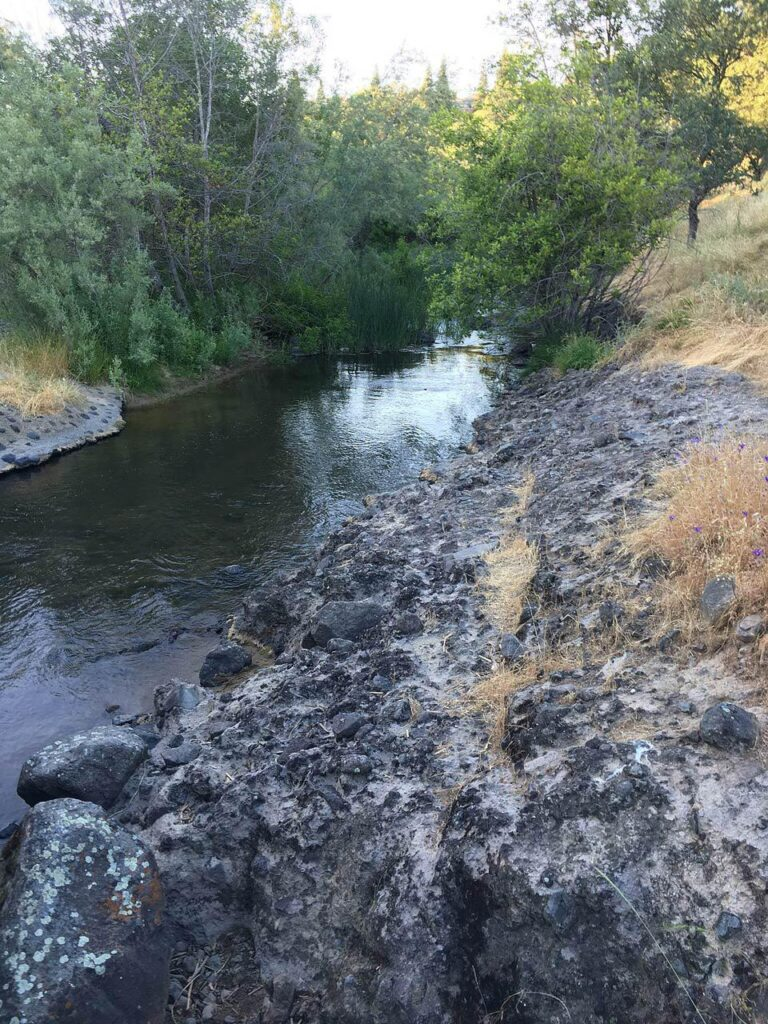 Calm flowing stream with rocky and wooded bank at Miners Ravine Trail in Placer County California
