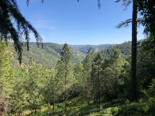 Scenic vista of green pine trees blue skies and wooded mountains from the Western States Pioneer Express Recreation Trail in El Dorado County and Placer County California