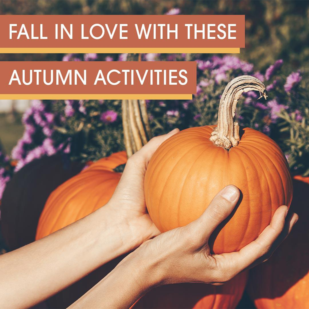 Fall in love with these autumn activities